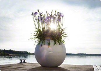 Millaista ilmaa sinä kotonasi hengität? - Nauti puutarhastasi. Me teemme siitä yllättävän helppoa.