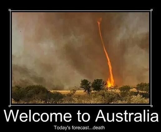 Saw this first on Kangaroo Dundee - couldn't believe it, a whirlwind full of fire - hell itself!
