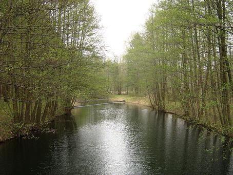 Brandenburgl, 16831 Zechlinerhütte: Tagestour Rheinsberger Seen - inkl. Fischräucherei Rheinsberg - #deutschlandurlaub