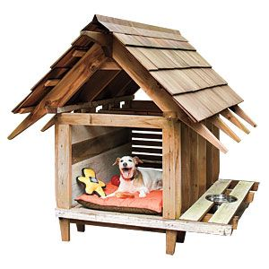 stylist and luxury how to design a dog house. Doghouse Designs 119 best Homes Fit For A Dog  images on Pinterest cat
