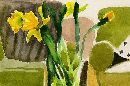 Day 10- Daffodil study