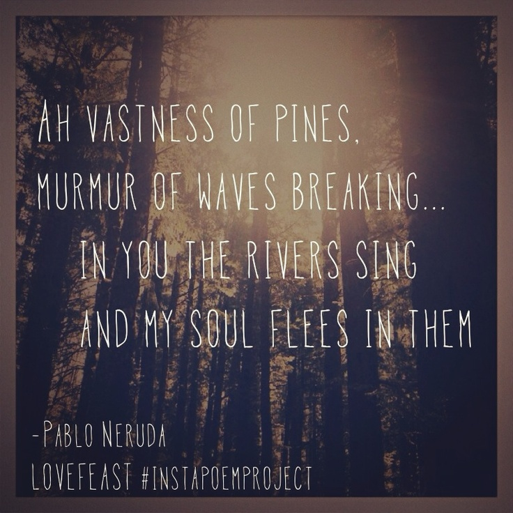 in the pines | Pablo Neruda Love Poems @LOVEFEAST_ Instagram #instapoemproject for National Poetry Month