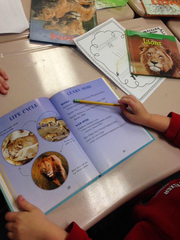 Readers workshop mini lessons in kindergarten   bing
