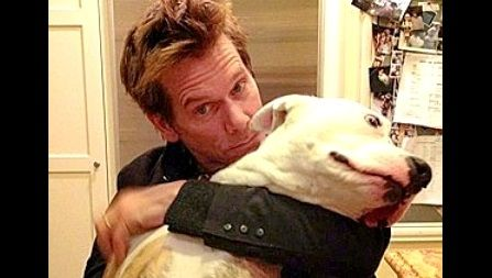 Celebrities you didn't know were pit bull lovers. There were actually so many to choose from, it was hard to choose only ten.