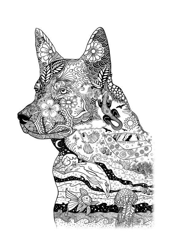 493 best Cattle Dog Art images
