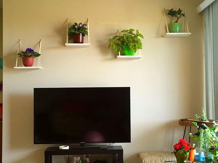 Twill tape plant shelves using OOK hook picture hangers.