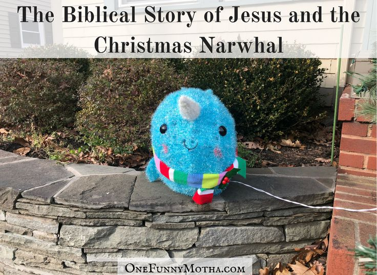 The Biblical Story of Jesus and the Christmas Narwhal by @OneFunnyMotha