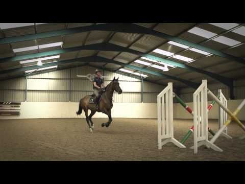 Behind The Scenes of Showjumping - Excelling Under Pressure