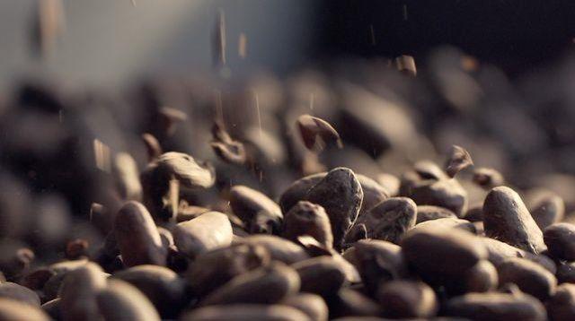 La manufacture du chocolat Alain Ducasse