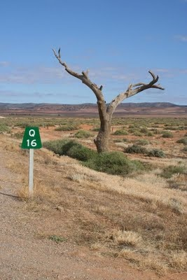 The Aussie outback near Quorn, South Australia.