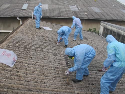 Recently asbestos was used on roof sheeting and cladding to fortify it. Blended into siding and roofing materials, asbestos fibers were used to increase durability and provide greater fireproofing and insulation. If you are seeking asbestos roof sheeting, then we have the right solution.