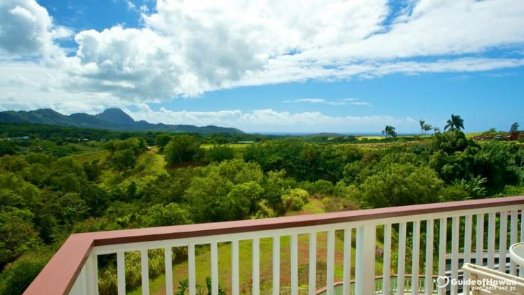 Kauai Banyan Inn | Reviews and Photos
