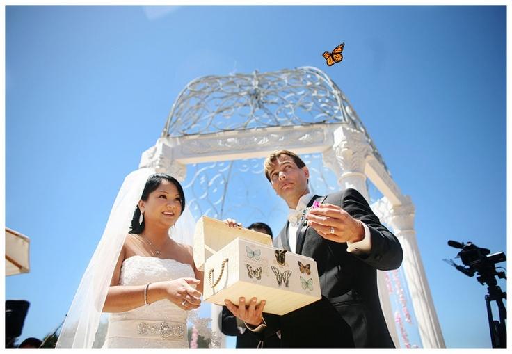 Butterfly wedding theme, butterfly release