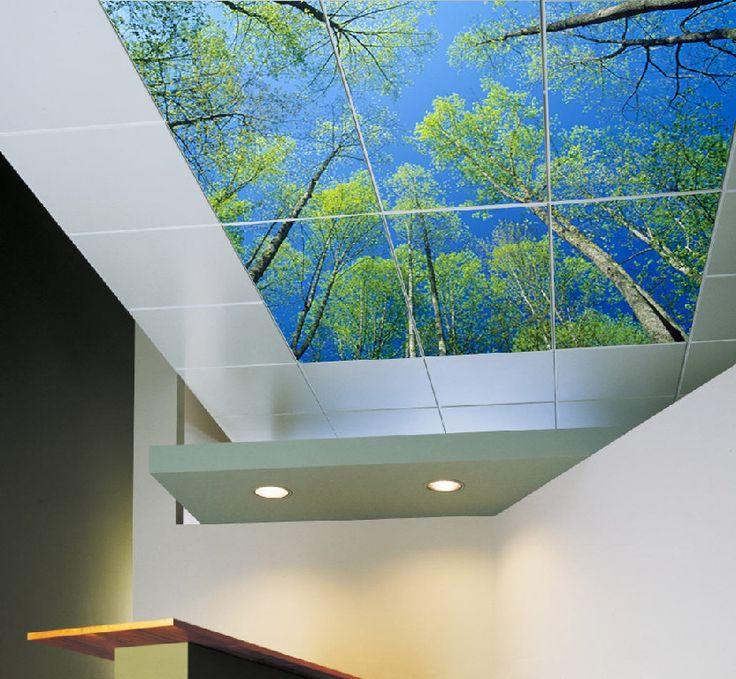 Best 25 sky ceiling ideas on pinterest bedroom - Can you wallpaper drop ceiling tiles ...