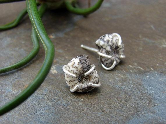 Custom Graspedite Fossil Ammonite Pair Silver Prong Set Post Earrings by Sara B. Jewelry & Metalsmithing