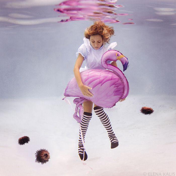 """Projeto """"Alice in Waterland""""   Criatives   Blog Design, Inspirações, Tutoriais, Web Design"""