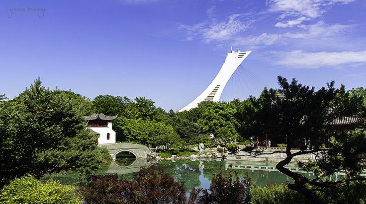chinese_garden_montreal_botanical_garden.jpg