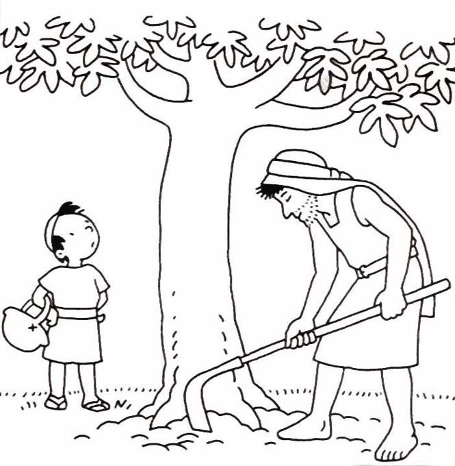 19 best creative activities images on Pinterest Church crafts - new coloring page fig tree