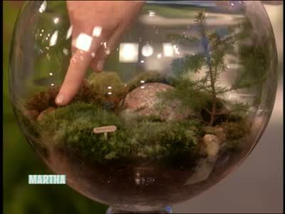 Martha Stewart And Guest Al Benner Talk About Different Types Of Moss Used  For Lawns And
