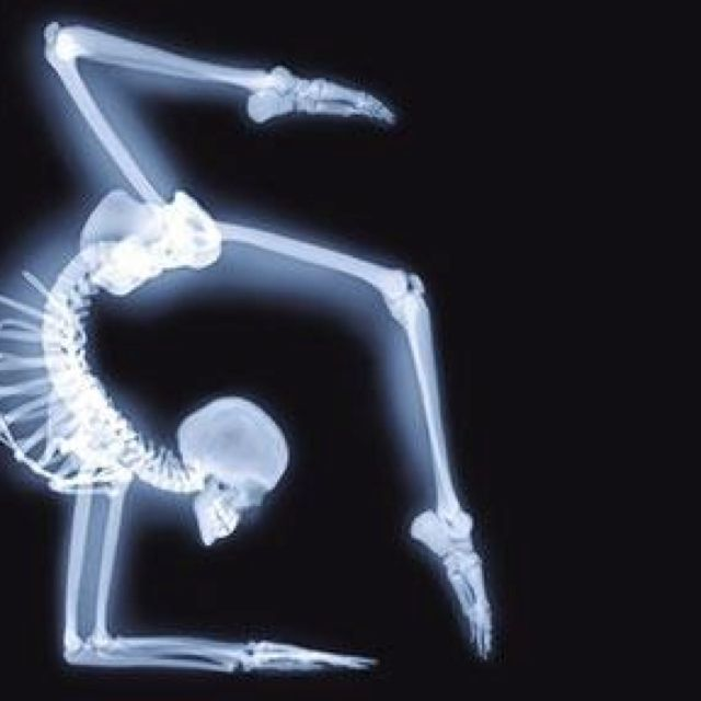 41 best x ray vision images on pinterest x rays bones and helmut x ray yoga ccuart Images