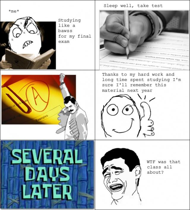 Funny Meme Comics About School : Best rage comics rules images on pinterest
