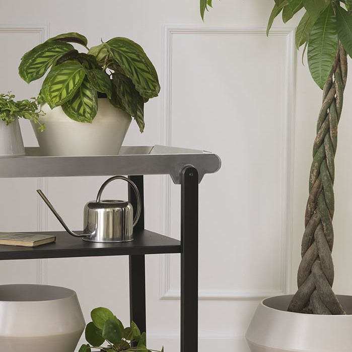 Our Anoon trolley works perfectly as a base for plants and is an excellent way to get more green into the interior.