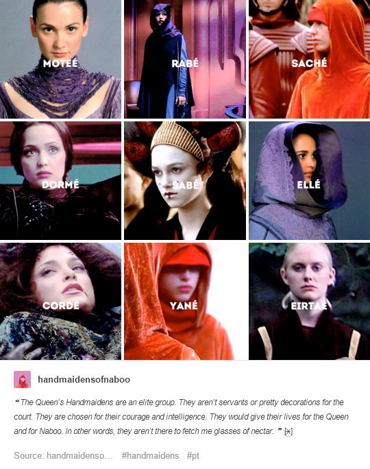 The Queen's Handmaidens are an elite group. They aren't servants or pretty decorations for the court. They are chosen for their courage and intelligence. They would give their lives for the Queen and for Naboo. In other words, they aren't here to fetch me a glass of nectar.