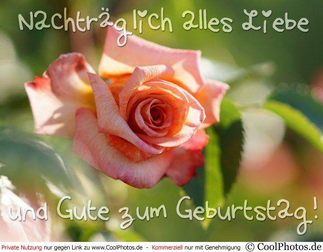 Liebe Geburtstagswunsche Nachtraglich Best Of Cool S Nachtraglich