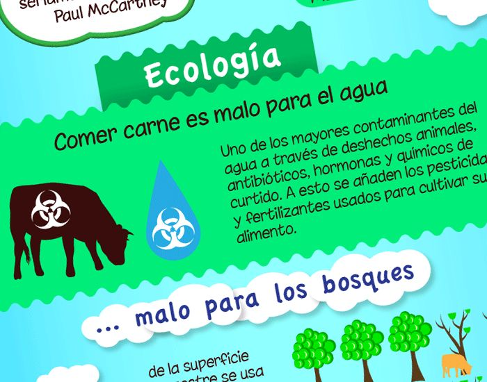 Infografía: El impacto ecológico del consumo de carne