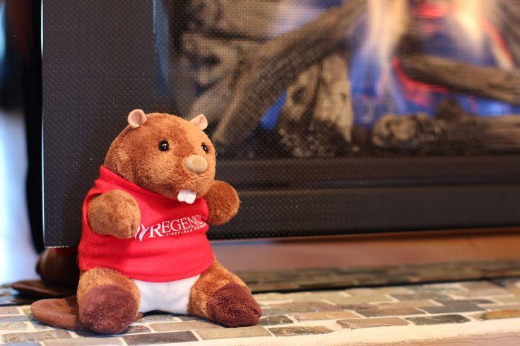 #regencyreggie admiring the new gas fireplace :)) @regencyfire