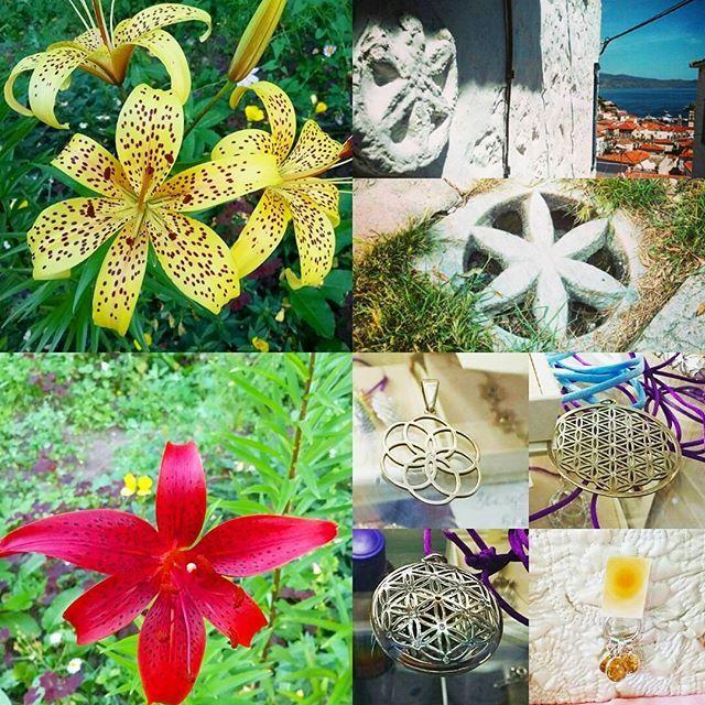 Тигровые лилии.. мои любимые... с моей детской клумбы... я была специалистом по размножению тигровых лилий в детстве.. я очень любила эти цветы среди изобилия цветов на дачных клумбах.. Сейчас вижу ответ... 6 лепестков... геометрически точно расположены друг напротив друга... схожи с семенем жизни и цветком жизни... благодарю.. люблю... 💓💎💎💎🙏💚 #семяжизни #цветокжизни #seedoflife #floweroflife #lily #лилия #благодарюлюблю #ЛюбовьТамГдеЯЕсть 💓🙏