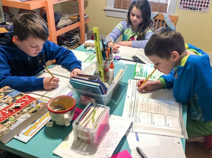Ideas on homeschooling from Pre-K to second grade #learning #activities