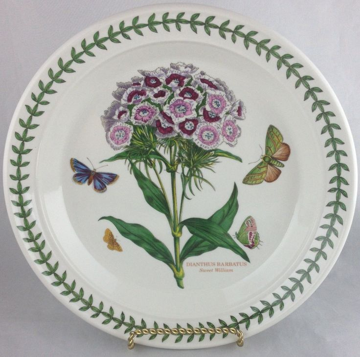 Portmeirion China Botanic Garden Set of 5 Salad Plates Free Shipping | eBay