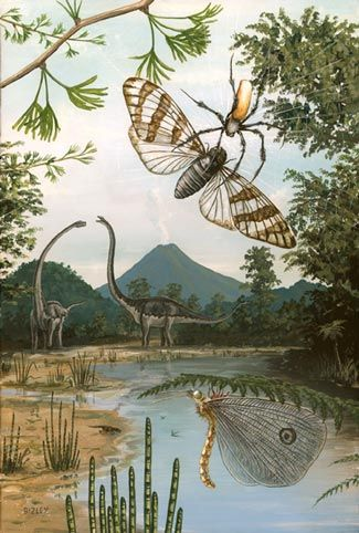 17 Best images about Dinosaurs on Pinterest | Dinosaurs ...