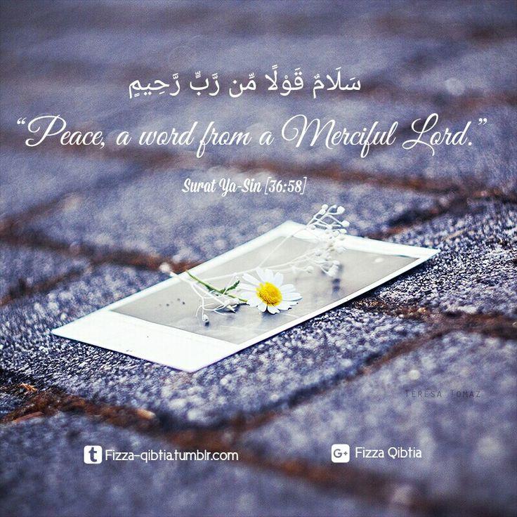 "سَلَامٌ قَوْلًا مِّن رَّبٍّ رَّحِيمٍ   ""Peace, a word from a Merciful Lord."" (Surat Ya-Sin 36:58)   #Islam #Allah #Quran #ILoveQuran #Peace"