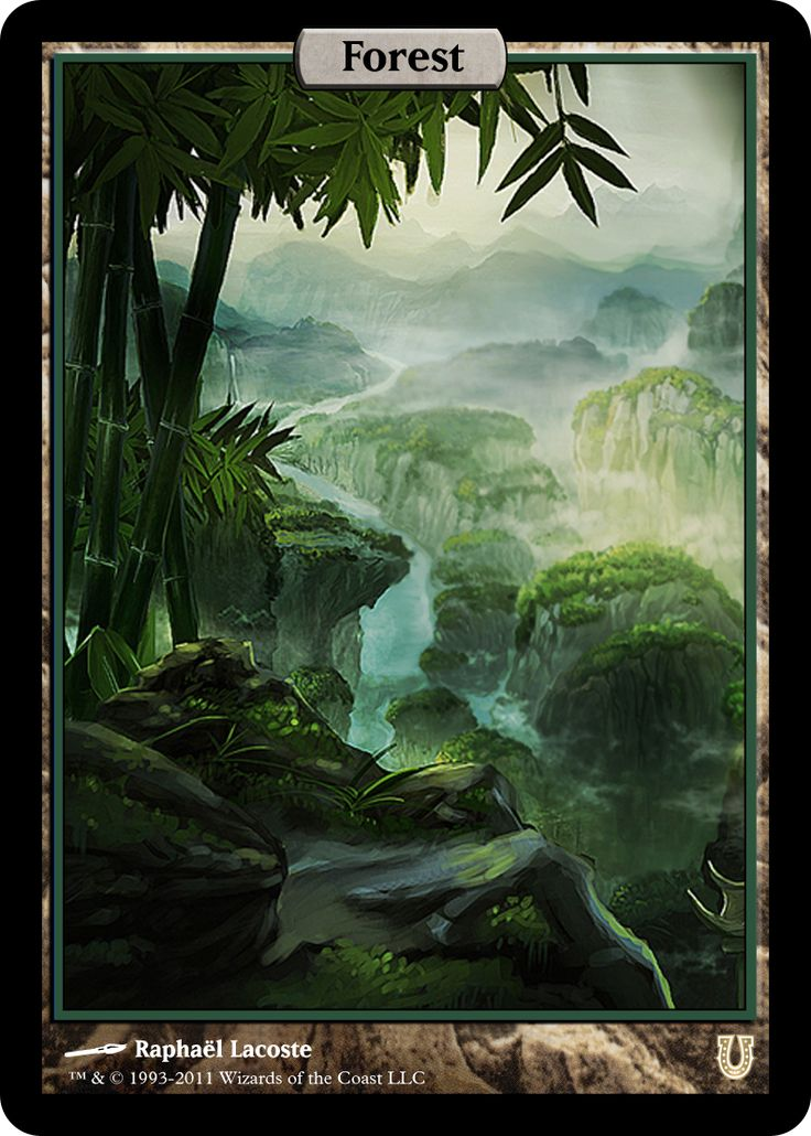 MtG Art: Forest from Fate Reforged Set by Adam Paquette - MTG ART ...