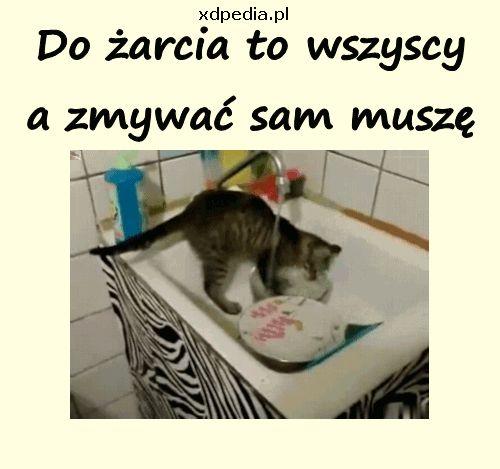 do_zarcia_to_wszyscy_a_zmywac_201.gif (500×469)