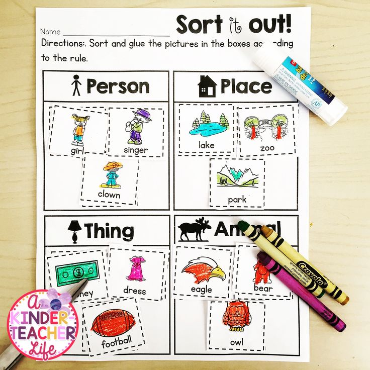 Sort nouns - person, place, thing and animals (Color, cut and glue printable!)