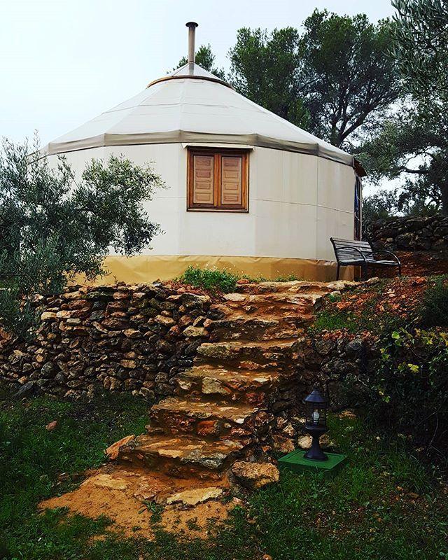 Yurta Mongola #yurta #relax #namaste #casarural #olivos #modohippie #happymoments #newexperience #nuevaexperiencia #deltadelebre #tarragona #villafeliche #ecoturismo #sostenible #findesemana