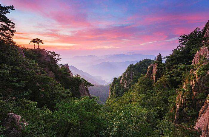 The Mountain | Official Korea Tourism Organization