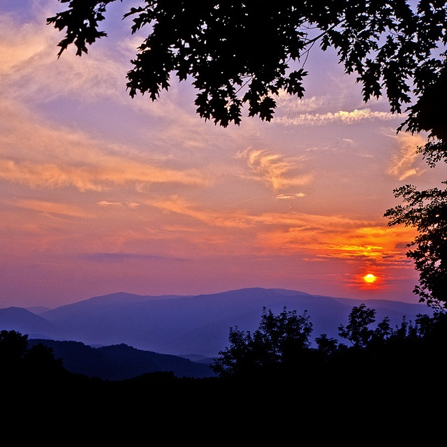 208 Best Images About Oh This Is Tennessee On Pinterest