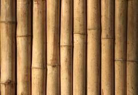 bij deze kunst deed de steel van de bloemen me denken aan bamboe  kunst 2
