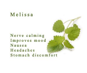 Things that doTerra Melissa Oil is good for. http://www.trydoterra.com/natures-single-essential-oils