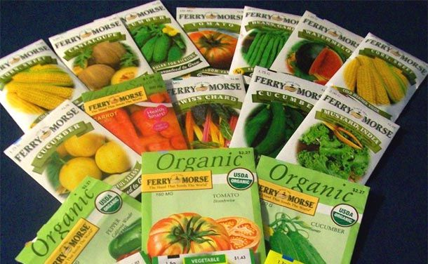 Tips on buying seed, Best catalog for your area.  Life of different seeds from short life - long lasting seeds