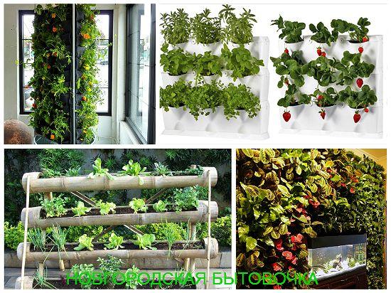 Идеи для вертикального озеленения.. Обсуждение на LiveInternet - Российский Сервис Онлайн-Дневников