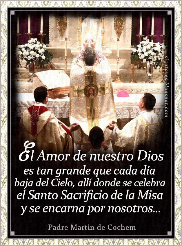 Pin De Luz Violeta En Frases Santos Santisimo Sacramento Del Altar Mensajes Del Papa Francisco Oraciones De Fe