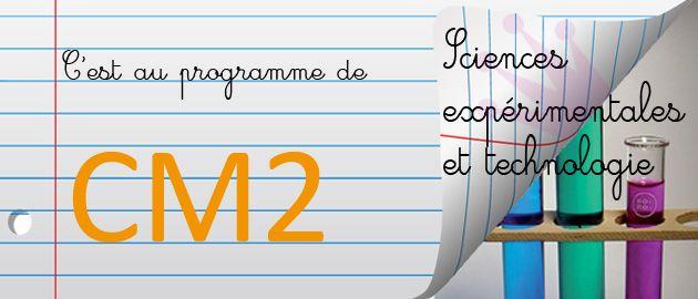 CM2 : programme scolaire de sciences expérimentales et technologie: Items, School Ideas