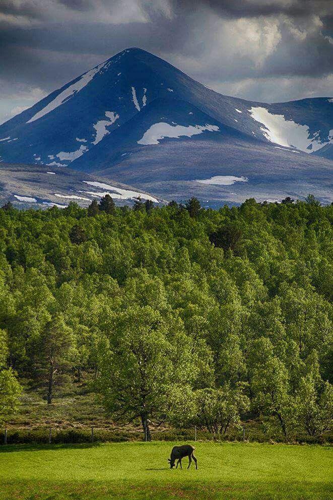Alvdal Norway