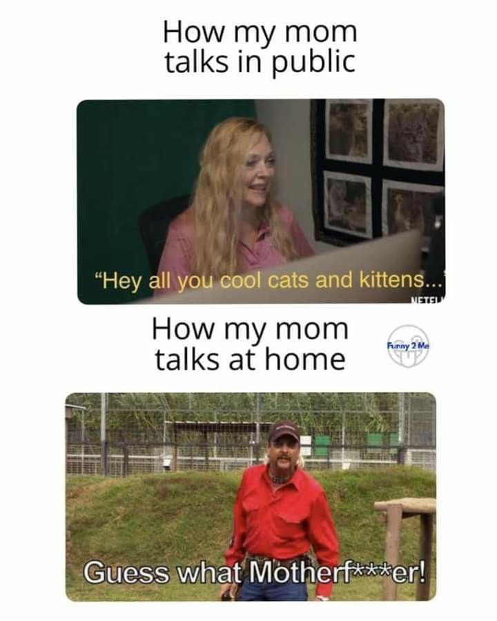Pin By Kris E On Humor Me In 2020 King Meme Memes Mom Humor