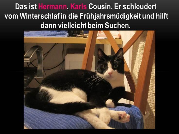 Das Ist Hermann Karls Cousin Er Schlendert Vom Winderschlaf In Die Fr Hjahrsm Digkeit Und